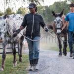 Can Haraway's vegan meet animals responsibly?